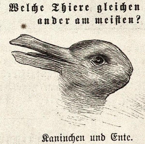 OTA-Fliegende-DuckRabbit-1892