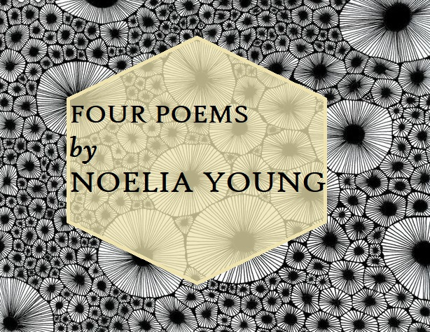 Four Poems by NoeliaYoung